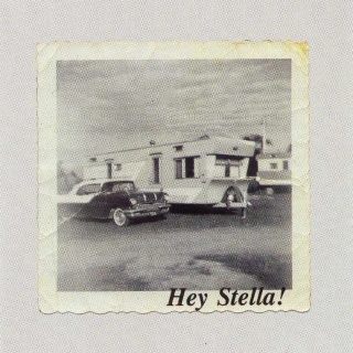 Hey Stella album cover.jpg