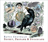 Secret Profane & Sugarcane album cover.jpg