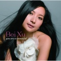 Bei Xu You Are So Beautiful album cover.jpg
